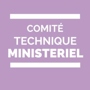 comité technique ministériel de l'éducation nationale