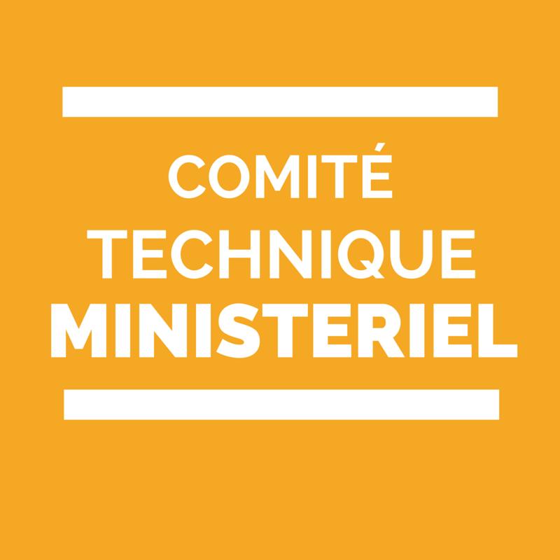 Comit technique minist riel de l 39 ducation nationale - Education nationale grille indiciaire ...
