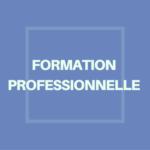 formation professionnelle - 3ème PrépaPro