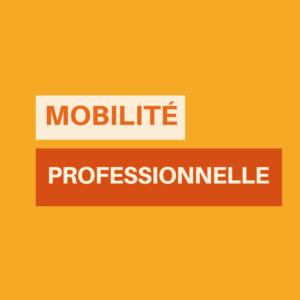 mobilité des EC - Statut des enseignants chercheurs