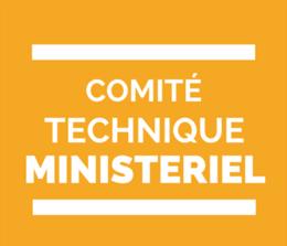 comité technique ministériel