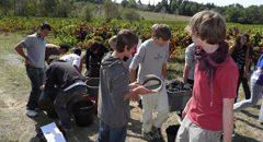 établissement public local d'enseignement et de formation professionnelle agricole