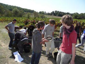 réforme de la formation professionnelle et lycées agricoles