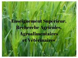 Fusions dans l'enseignement supérieur agronomique et vétérinaire