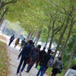 enseignement supérieur - Loi ORE