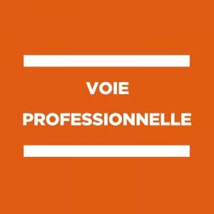 Validation des diplômes professionnels 2020