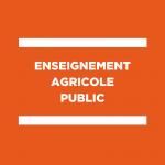 L'apprentissage au ministère de l'agriculture : espoir et incertitudes