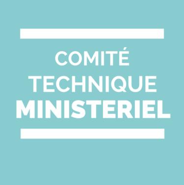 Comité Technique Ministériel CTM