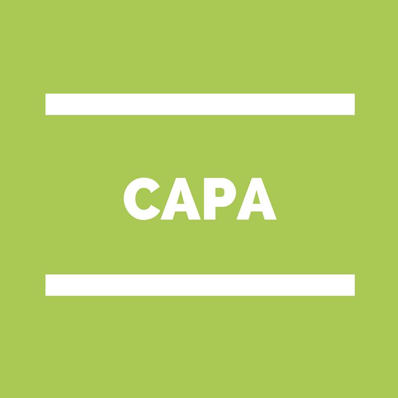 CAPA Commission administrative Paritaire académique
