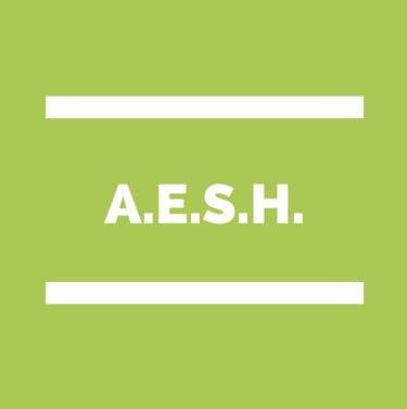 Enquête AESH