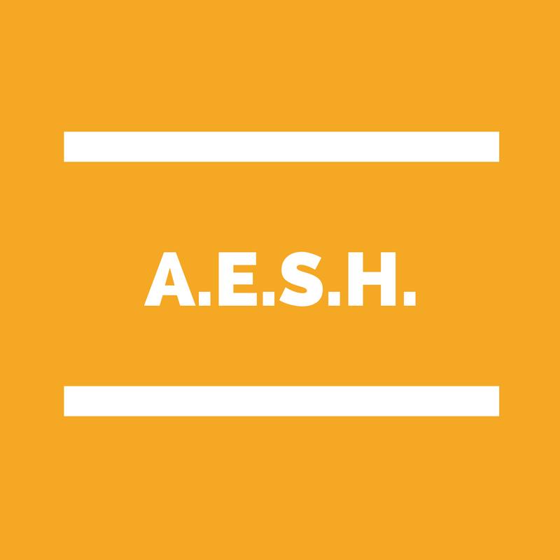 formation AESH