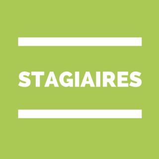 stagiaire PES Bourgogne Dijon