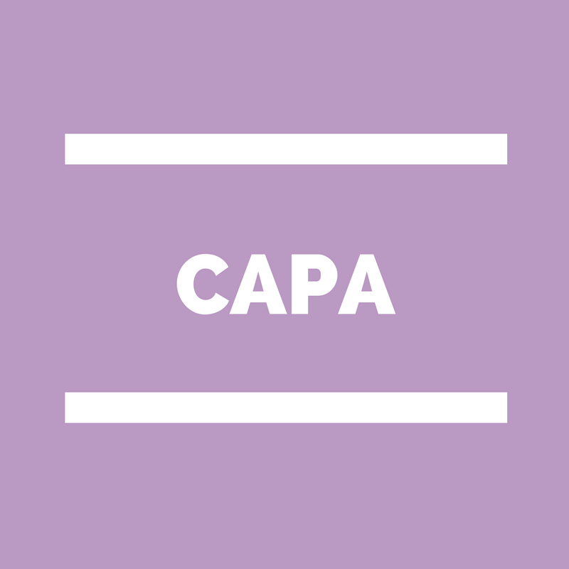 CAPA Commission administrative paritaire académique