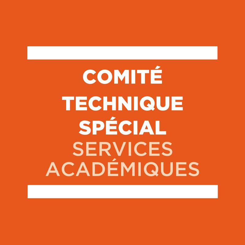 Comité Technique Spécial - CTS