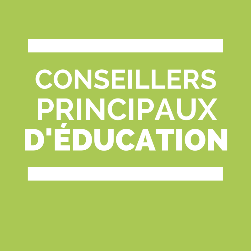 Cpe grille d 39 valuation du rendez vous de carri re - Grille indiciaire cpe education nationale ...
